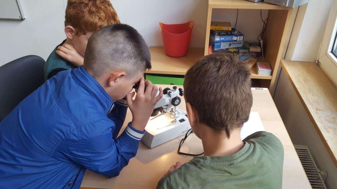 Mikroskopieren in kl wilhelm busch schule hagen