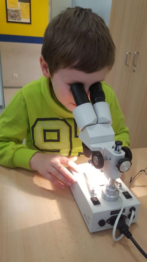 WBS, Homepage, Schj. 17-18, 6 Mikroskop2